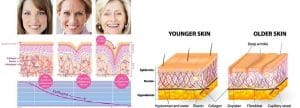 photo young and old skin paris cosmetic medecine