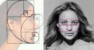 image of face proportions for injections